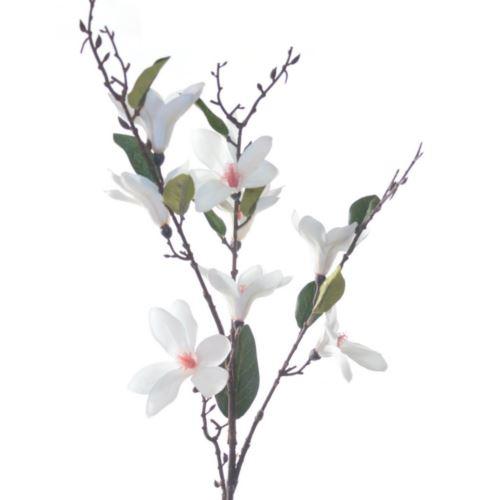 Magnolia drobna 90cm CV08354 white