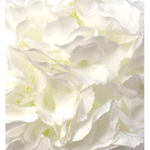 Hortensja wyr. 23cm h13 cm biała
