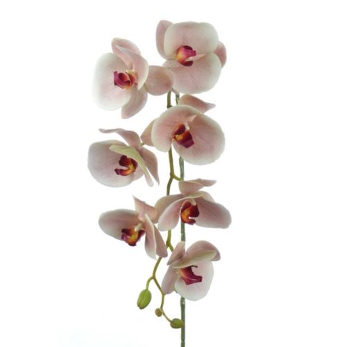 Orchid real touch 106 cm zb014 3