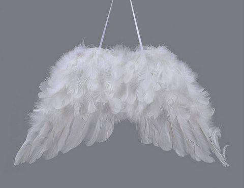 Skrzydla aniolka 26cm 2szt/pacz PINK