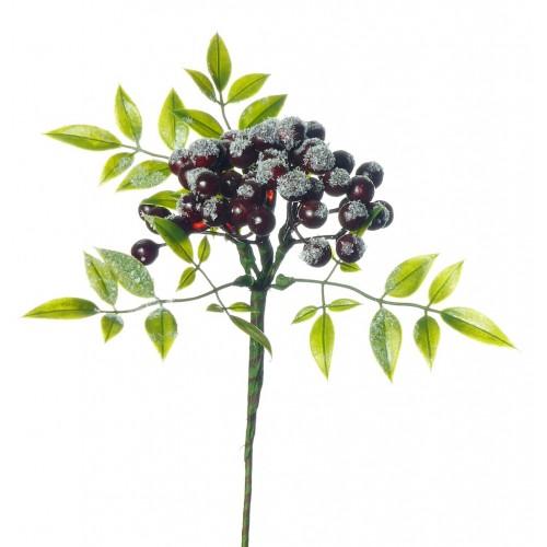 gałązka z kulkami i liściem