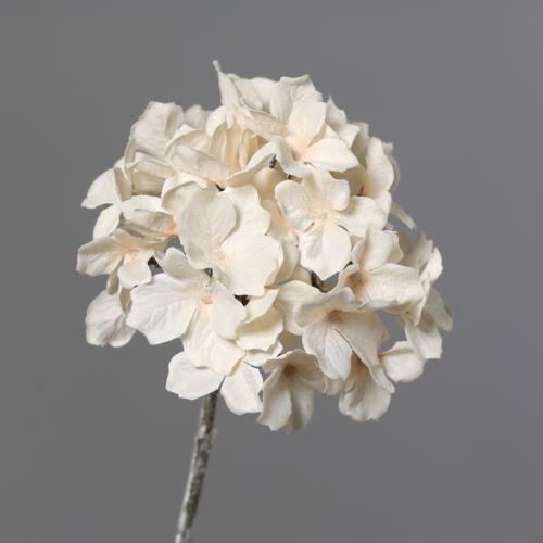 Hydrangea with Ice 12cm 49 cm cream