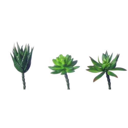 Succulent set x3 10-13cm  3pcs