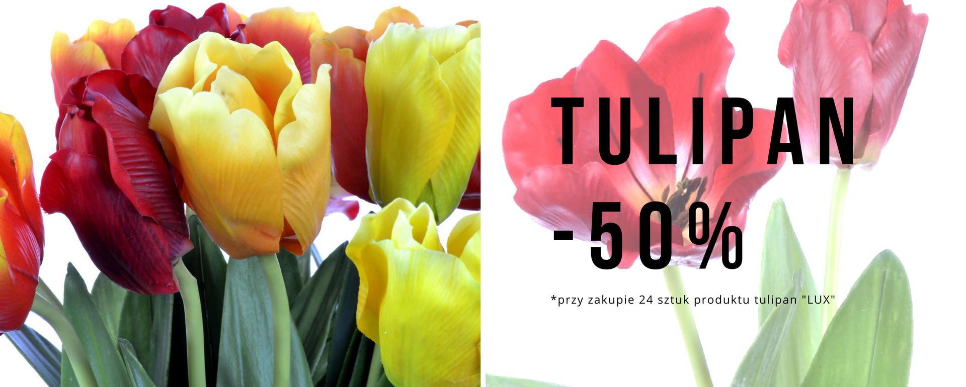 Tulipany -50% Wyprzedaż